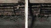 クリーニング前のファンと吹出口 大阪の壁掛形エアコン